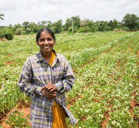 Rameswari-Devi-at-her-field-in-Devanakonda-Andhra-Pradesh