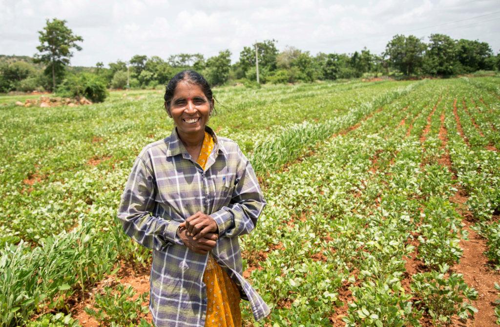 Rameswari Devi at her field in Devanakonda, Andhra Pradesh. Photo: S Punna, ICRISAT