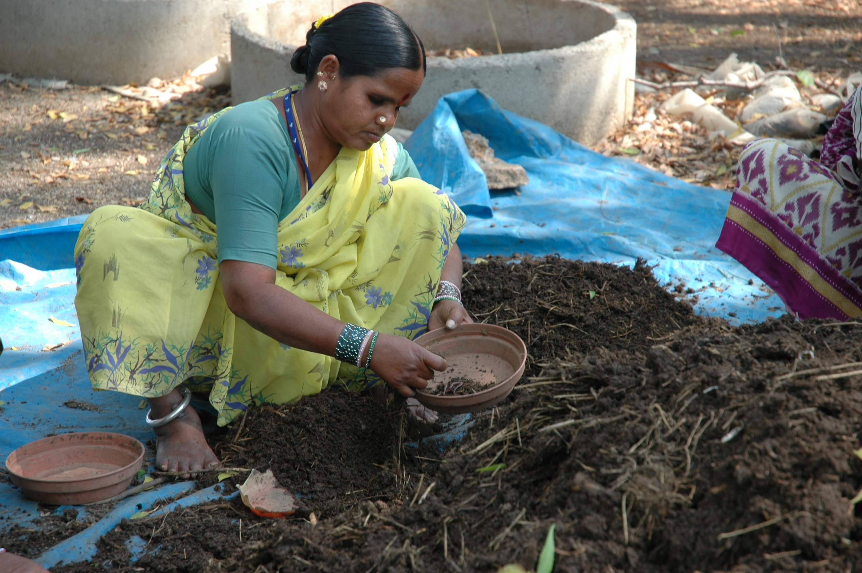 Aerobic Composting (Photo: IDC, ICRISAT)